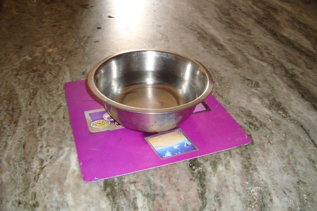 purple_plate-54