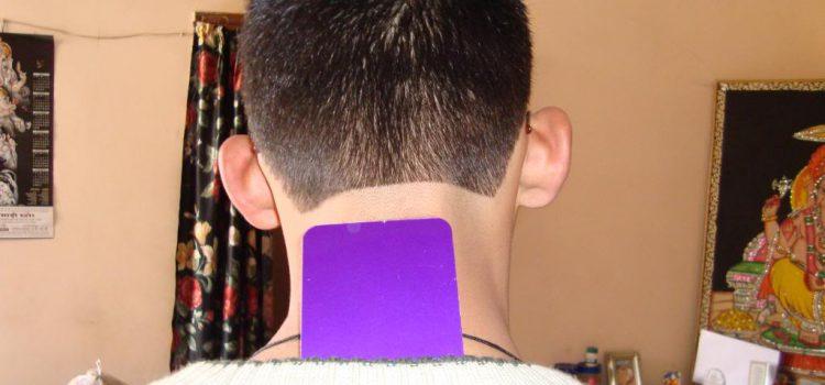 How do Purple Plates work ?