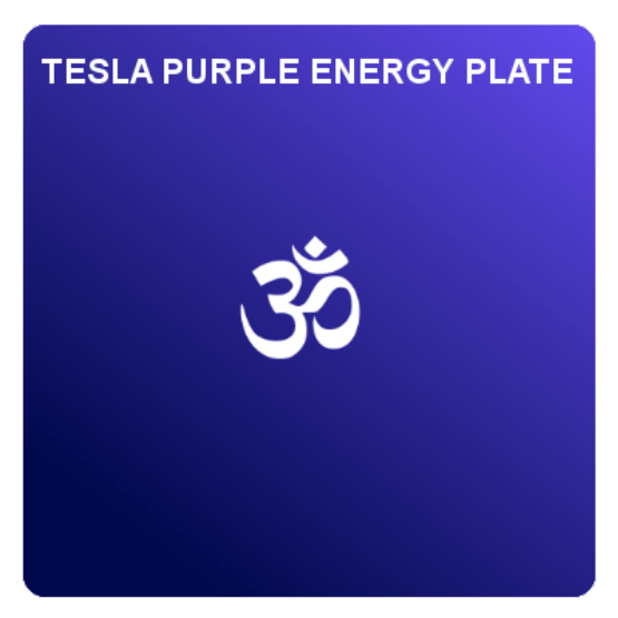 large_plate